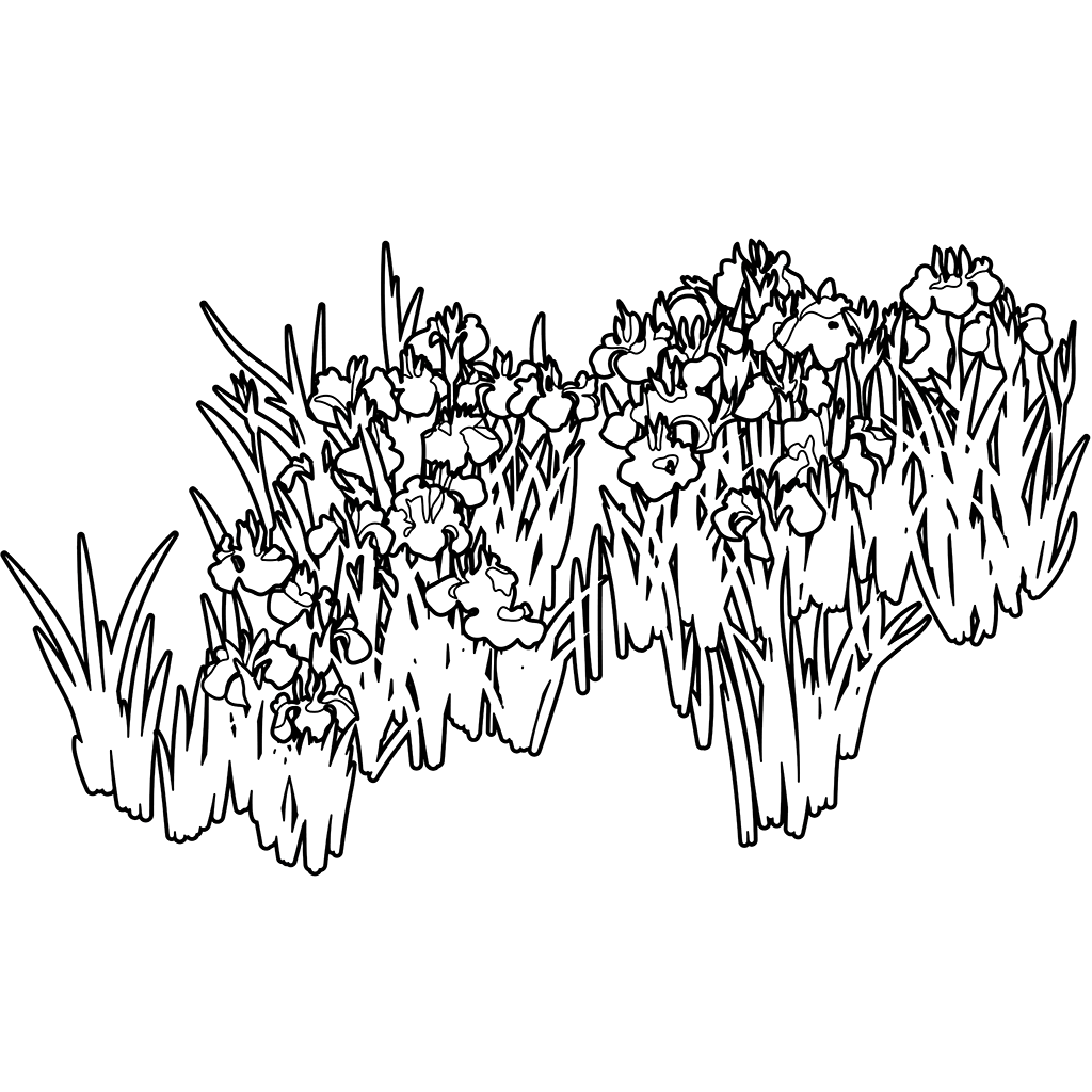 燕子花図:黒線バージョン